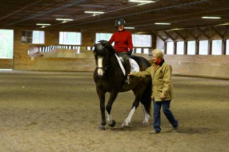 Riders got the chance to tune up and learn some new strategies at CRDA Adult Camp